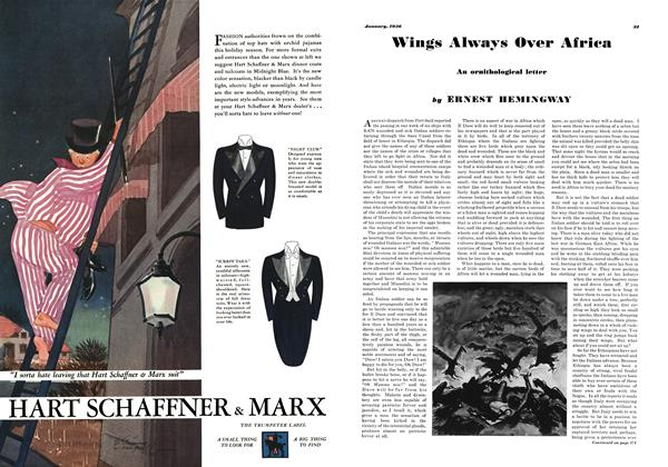 Article Preview: Wings Always over Africa, JANUARY 1936 1936 | Esquire