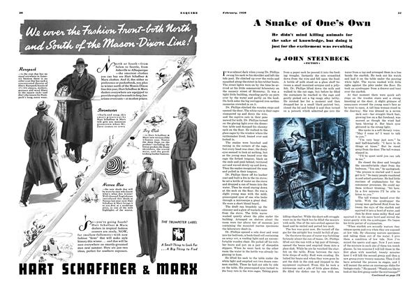 Article Preview: A Snake of One's Own, FEBRUARY 1938 1938 | Esquire