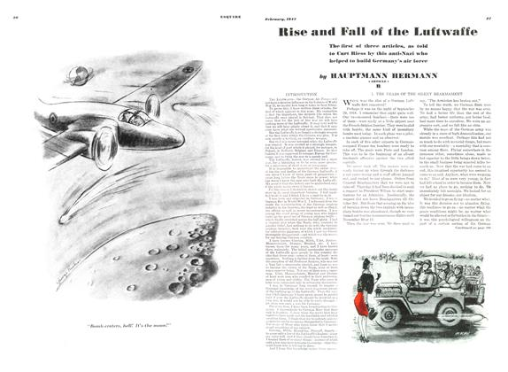 Rise and Fall of the Luftwaffe
