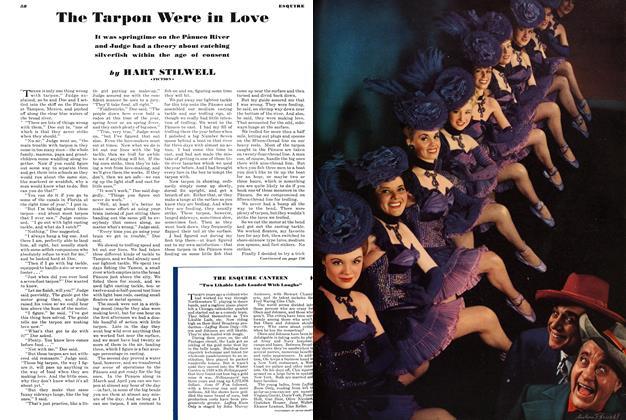 The Tarpon Were in Love
