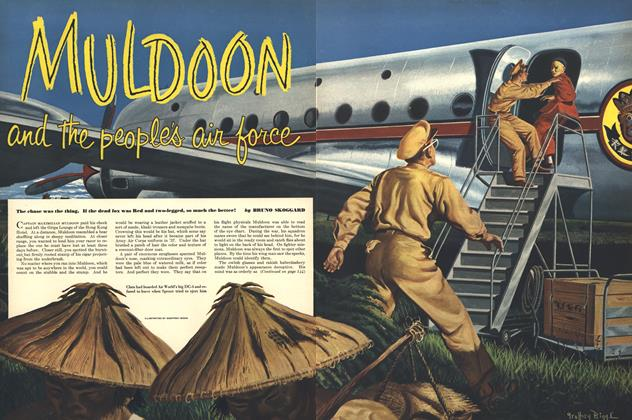 Muldoon and the People's Air Force