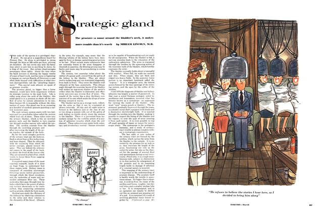 Article Preview: Man's Strategic Gland, MARCH, 1952 1952 | Esquire