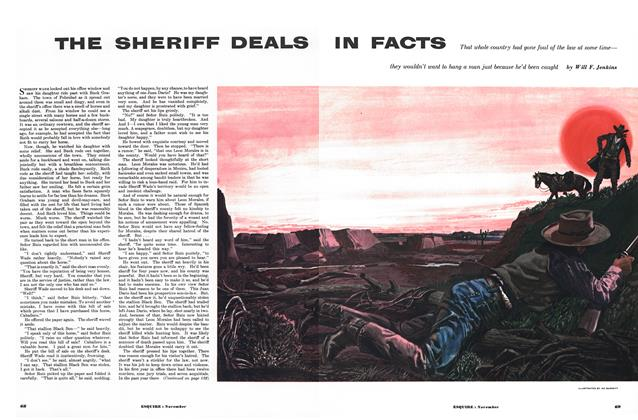 The Sheriff Deals in Facts