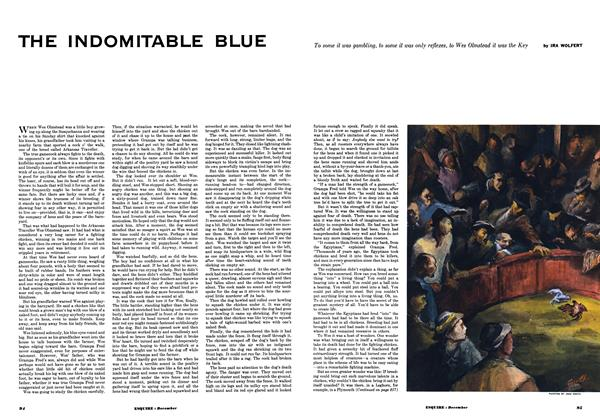 The Indomitable Blue