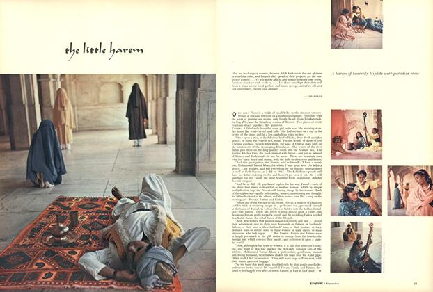 Article Preview: The Little Harem, SEPTEMBER 1955 1955 | Esquire