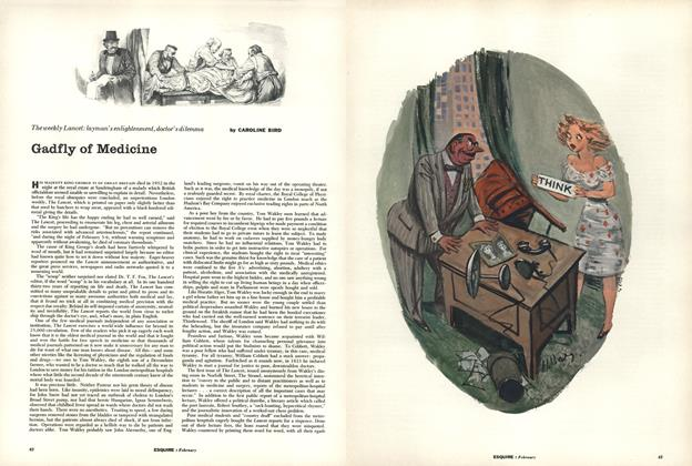Article Preview: Gadfly of Medicine, February 1956 | Esquire