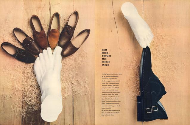 Soft Shoe Revue: The Latest Steps