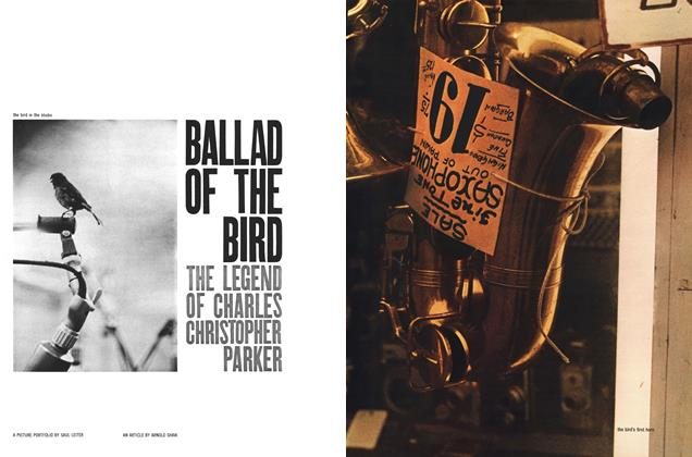 Ballad of the Bird