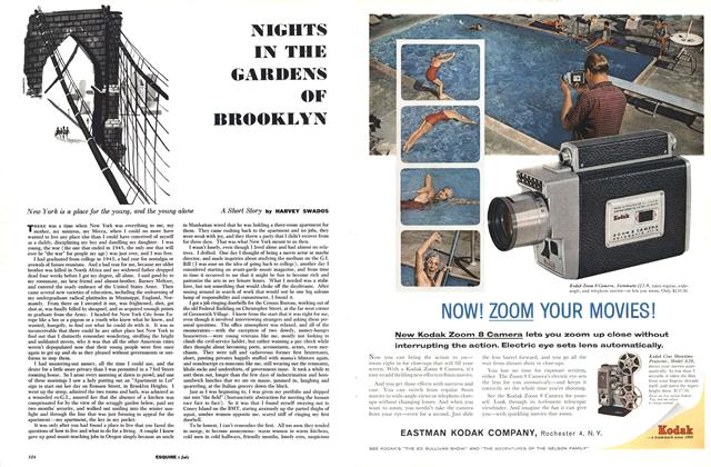 Article Preview: Nights in the Gardens of Brooklyn, July 1960 | Esquire