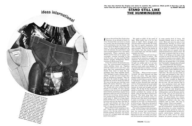 Article Preview: Stand Still Like the Hummingbird, NOVEMBER, 1961 1961 | Esquire
