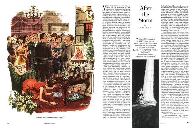 Article Preview: After the Storm, JANUARY, 1963 1963 | Esquire