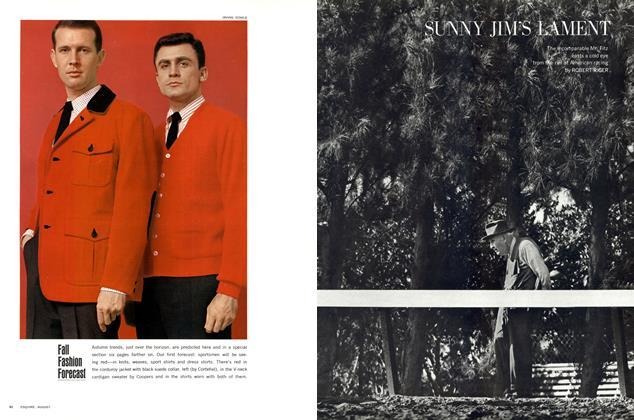 Article Preview: Sunny Jim's Lament, August 1963 | Esquire