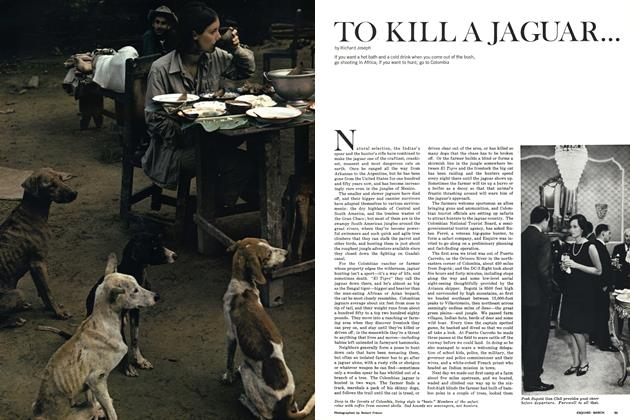 Article Preview: To Kill a Jaguar . . ., MARCH 1965 1965 | Esquire