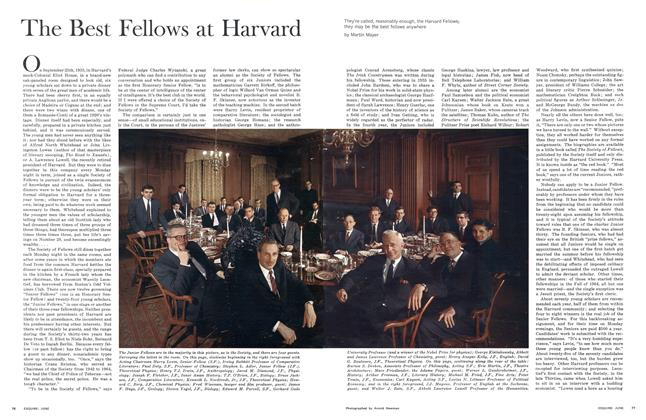 The Best Fellows at Harvard