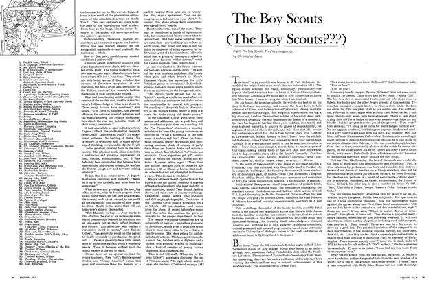 Article Preview: The Boy Scouts (The Boy Scouts???), JULY 1965 1965 | Esquire
