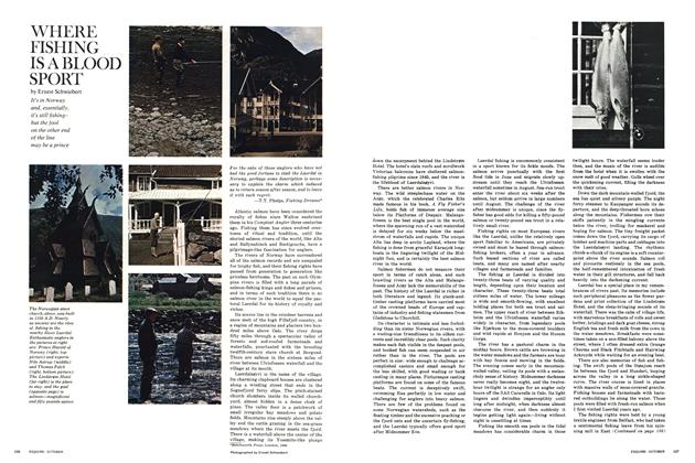 Article Preview: Where Fishing Is a Blood Sport, OCTOBER 1967 1967 | Esquire