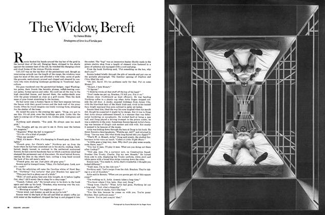 The Widow, Bereft