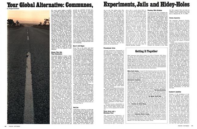 Your Global Alternative: Communes, Experiments, Jails and Hidey-Holes