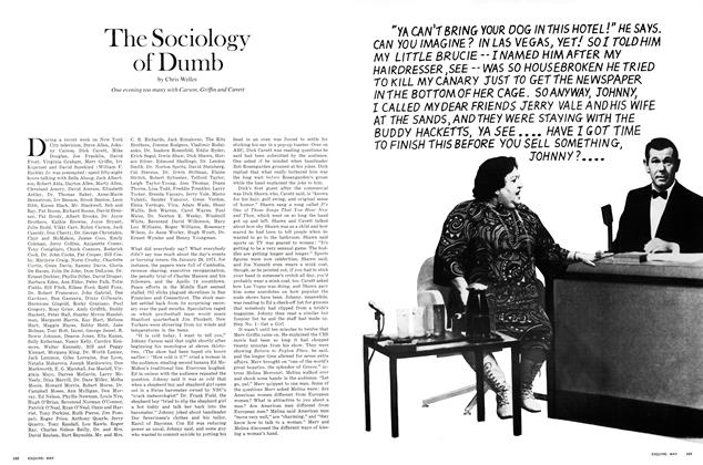 The Sociology of Dumb