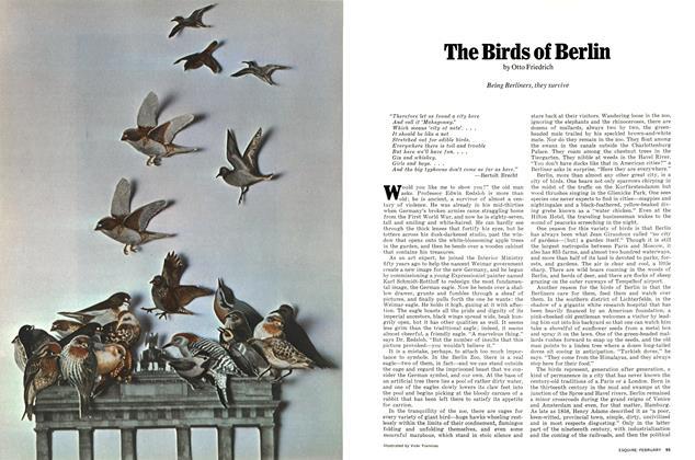 The Birds of Berlin