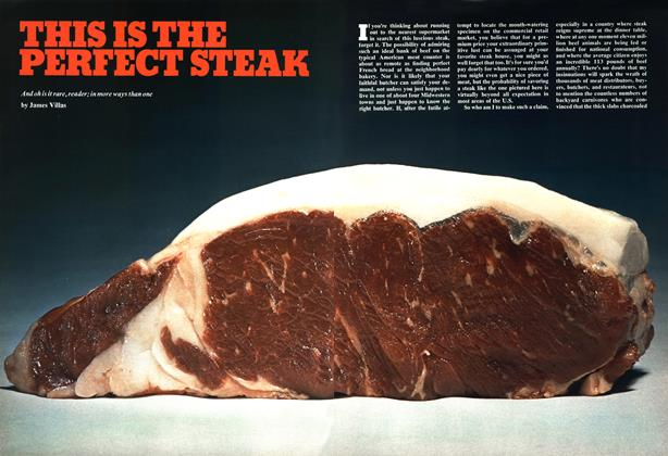 This Is the Perfect Steak
