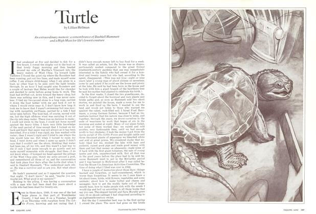 Article Preview: Turtle, June 1973 | Esquire