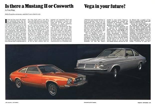 Is There a Mustang II Or Cosworth Vega in Your Future?