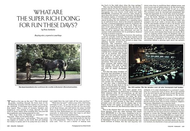 Article Preview: What Are the Super Rich Doing for Fun These Days?, FEBRUARY 1974 1974 | Esquire