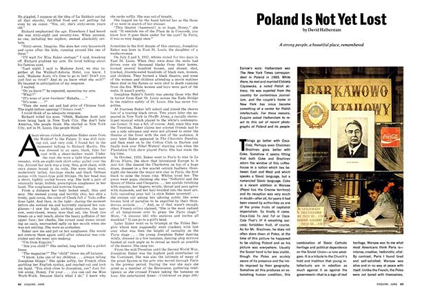 Article Preview: Poland Is Not Yet Lost, JUNE 1974 1974 | Esquire