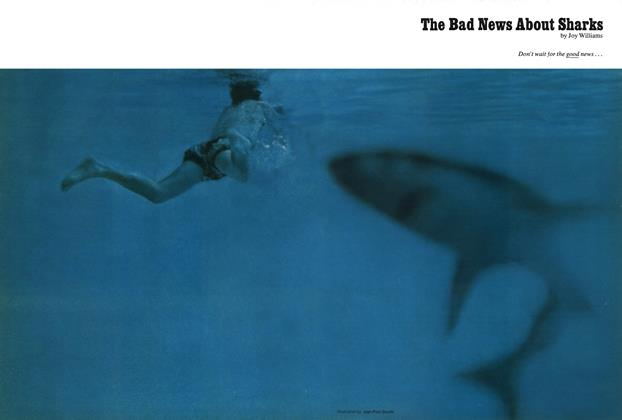 Article Preview: The Bad News About Sharks, June 1974 | Esquire