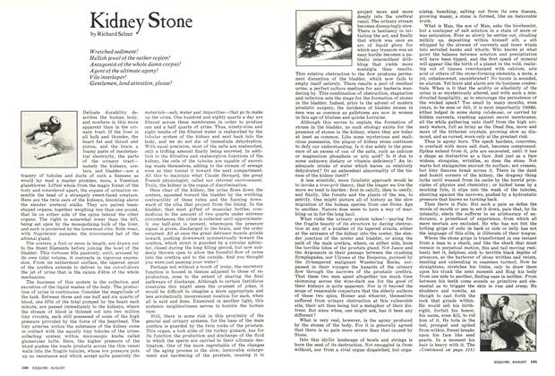 Article Preview: Kidney Stone, August 1974 | Esquire