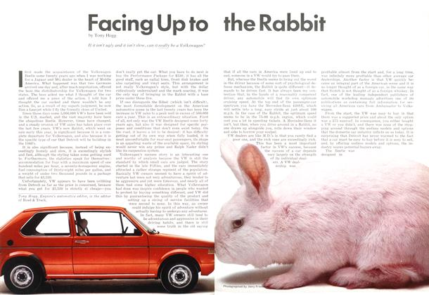 Facing Up to the Rabbit