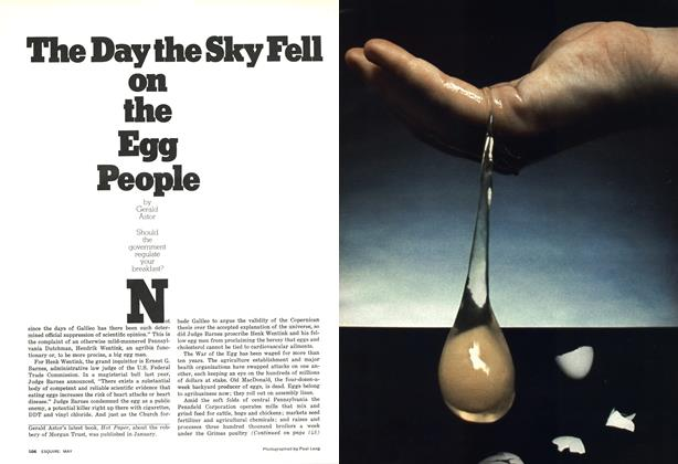 The Day the Sky Fell on the Egg People