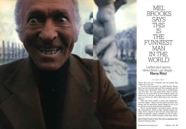 Article Preview: Mel Brooks Says This Is the Funniest Man in the World, JUNE 1976 1976   Esquire