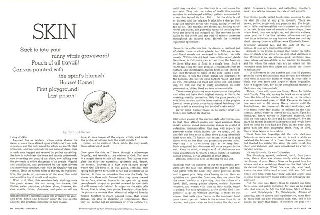 Article Preview: Skin, September 1976   Esquire