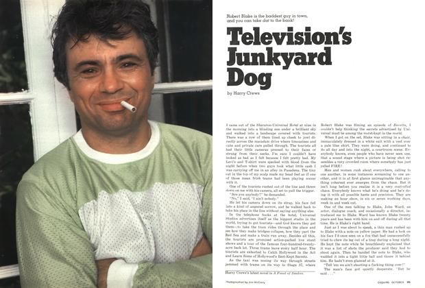 Article Preview: Television's Junkyard Dog, October 1976 | Esquire