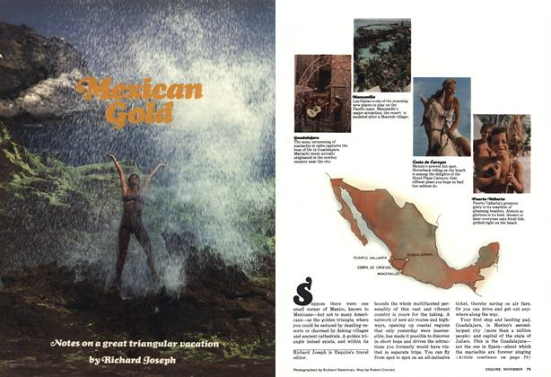 Article Preview: Mexican Gold, NOVEMBER 1976 1976 | Esquire