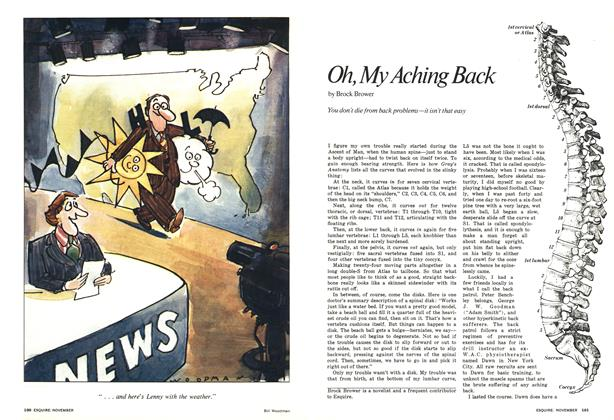 Article Preview: Oh, My Aching Back, November 1976 | Esquire