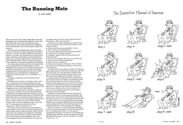 Article Preview: The Running Mate, December 1976 | Esquire