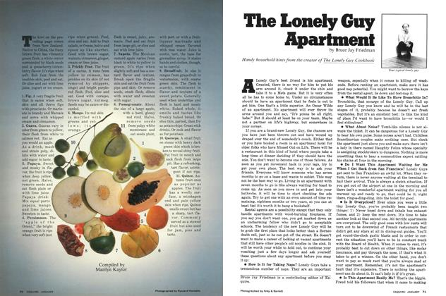 The Lonely Guy Apartment