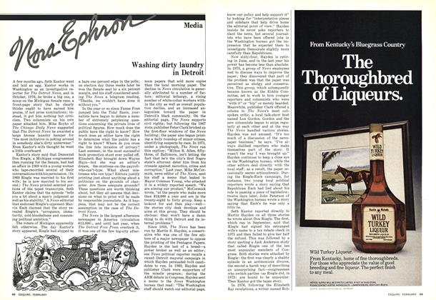 Article Preview: Washing Dirty Laundry in Detroit, FEBRUARY 1977 1977 | Esquire