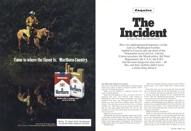 Article Preview: The Incident, MARCH 1977 1977 | Esquire