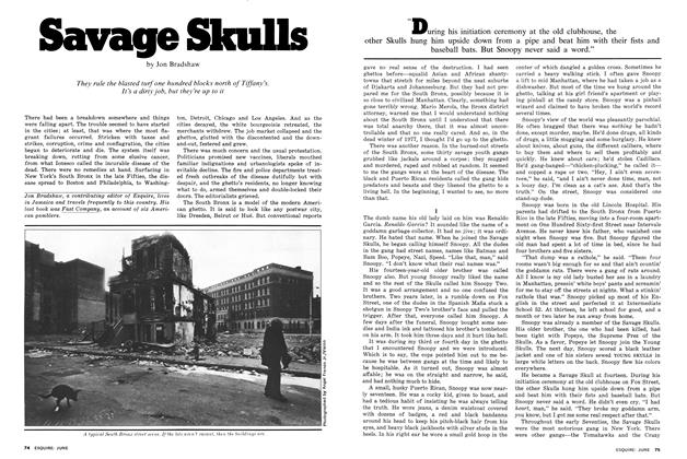 Article Preview: Savage Skulls, June 1977 | Esquire