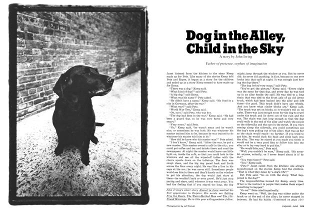 Article Preview: Dog in the Alley, Child in the Sky, June 1977 | Esquire