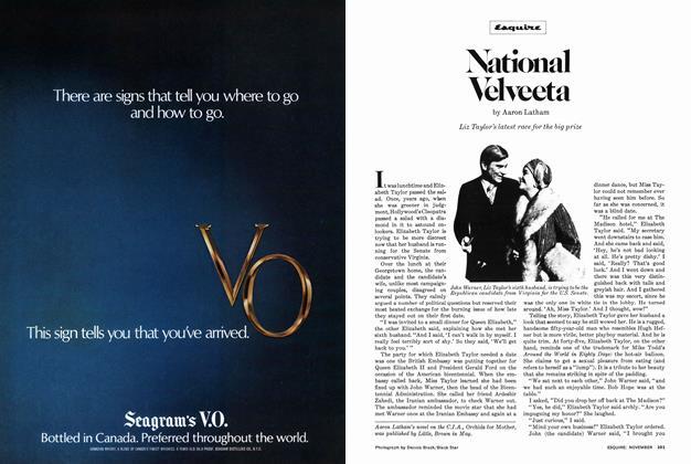 Article Preview: National Velveeta, November 1977   Esquire