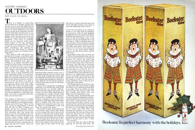 Article Preview: Split Wood, Not Atoms, DECEMBER 1977 1977 | Esquire