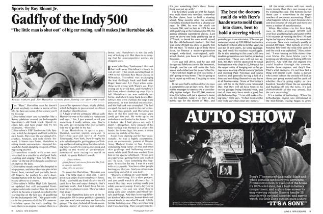 Gadfly of the Indy 500