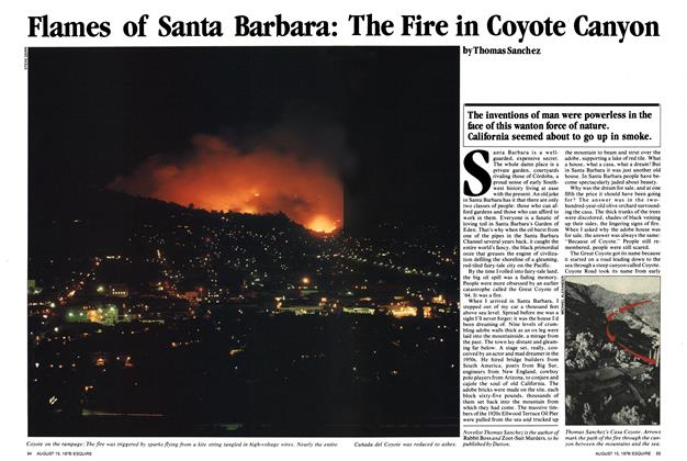 Article Preview: Flames of Santa Barbara: The Fire in Coyote Canyon, August 15,1978 1978 | Esquire