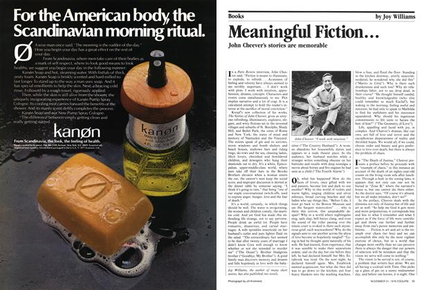 Article Preview: Meaningful Fiction..., November 21,  1978 | Esquire