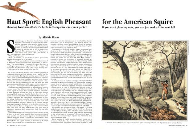 Haut Sport: English Pheasant for the American Squire